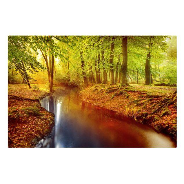 Produktfoto Leinwandbild Herbstwald - Quer 2:3, Grün, Gelb, Braun, Rot, Frontalansicht, Artikelnummer 205297-FF