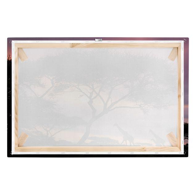 Produktfoto Afrika Leinwandbild Safari in Afrika - Giraffen, Lila, Schwarz, Quer 2:3, Keilrahmen Rückseite, Artikelnummer 205479-FB
