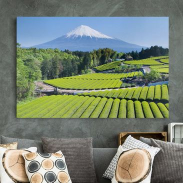 Immagine del prodotto Stampa su tela - Tea Fields In Front Of The Fuji - Orizzontale 2:3