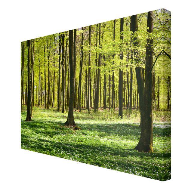 Produktfoto Leinwandbild - Waldwiese - Quer 2:3, Spiegelkantendruck rechts, Artikelnummer 205599-FR