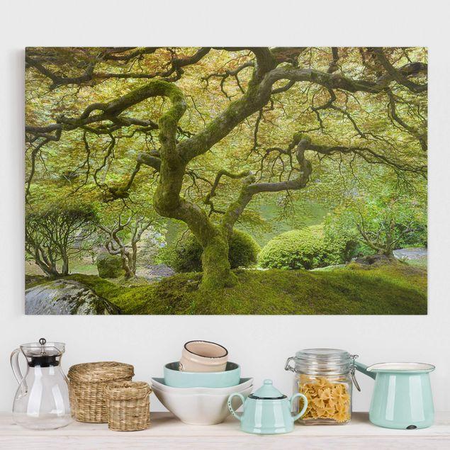 Produktfoto Leinwandbild - Grüner Japanischer Garten - Quer 2:3, vergrößerte Ansicht in Wohnambiente, Artikelnummer 205850-XWA