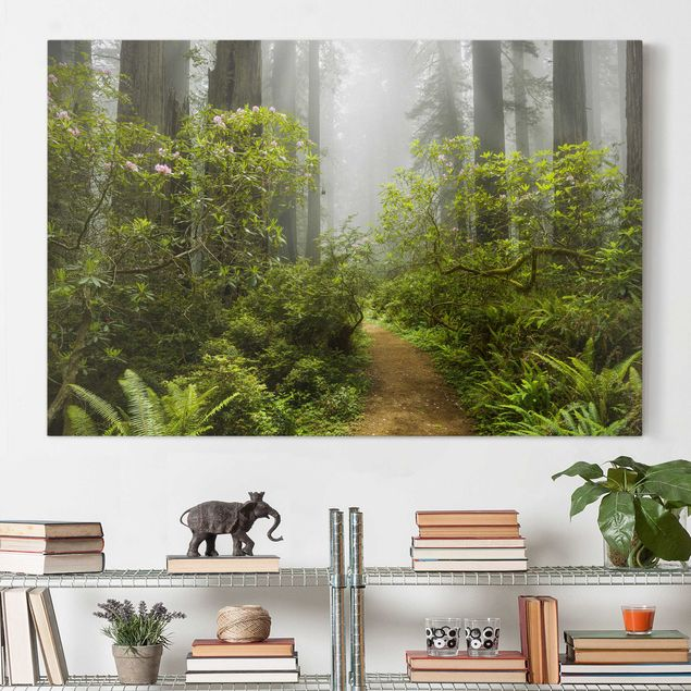 Produktfoto Leinwandbild - Nebliger Waldpfad - Quer 2:3, vergrößerte Ansicht in Wohnambiente, Artikelnummer 205856-XWA