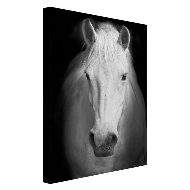 Produktfoto Leinwandbild Schwarz-Weiß - Dream of a Horse - Hoch 3:2, Spiegelkantendruck links, Artikelnummer 205960-FL