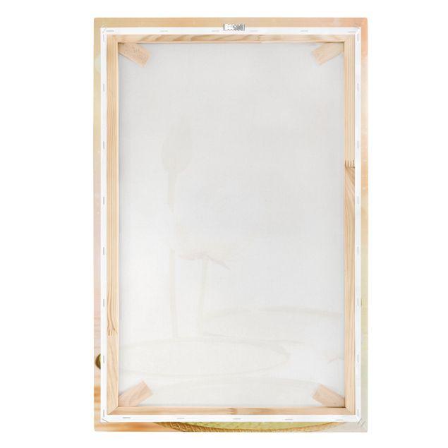 Produktfoto Leinwandbild - Seerosen Zauber - Hoch 3:2, Keilrahmen Rückseite, Artikelnummer 206038-FB