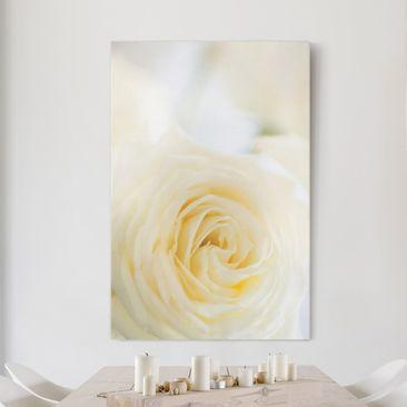 Produktfoto Leinwandbild - White Rose - Hoch 3:2, vergrößerte Ansicht in Wohnambiente, Artikelnummer 206063-XWA