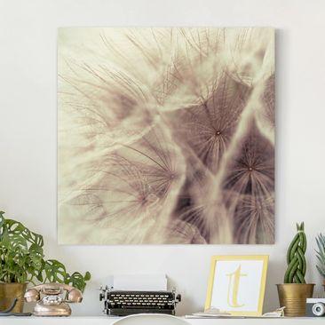 Produktfoto Leinwandbild - Detailreiche Pusteblumen Makroaufnahme mit Vintage Blur Effekt - Quadrat 1:1, vergrößerte Ansicht in Wohnambiente, Artikelnummer 206343-XWA