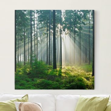 Produktfoto Leinwandbild - Enlightened Forest -...
