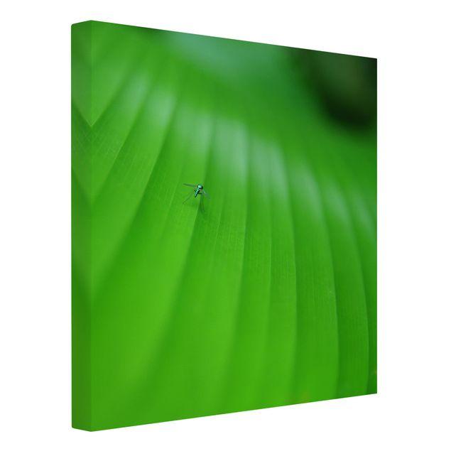 Produktfoto Leinwandbild - Metal Mosquito - Quadrat 1:1, Spiegelkantendruck links, Artikelnummer 206583-FL
