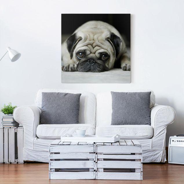 Produktfoto Leinwandbild Schwarz-Weiß - Pug Loves You - Quadrat 1:1, in Wohnambiente, Artikelnummer 206702-WA