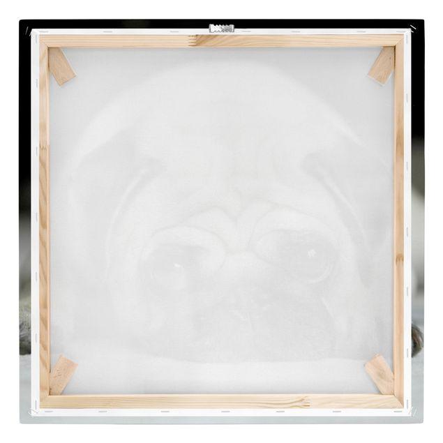 Produktfoto Leinwandbild Schwarz-Weiß - Pug Loves You - Quadrat 1:1, Keilrahmen Rückseite, Artikelnummer 206702-FB
