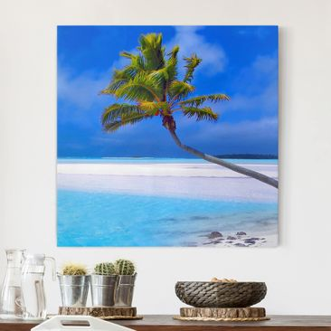 Produktfoto Leinwandbild - Tropical Dream - Quadrat...