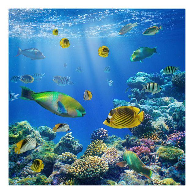 Produktfoto Leinwandbild - Underwater Lights - Quadrat 1:1, Frontalansicht, Artikelnummer 206838-FF
