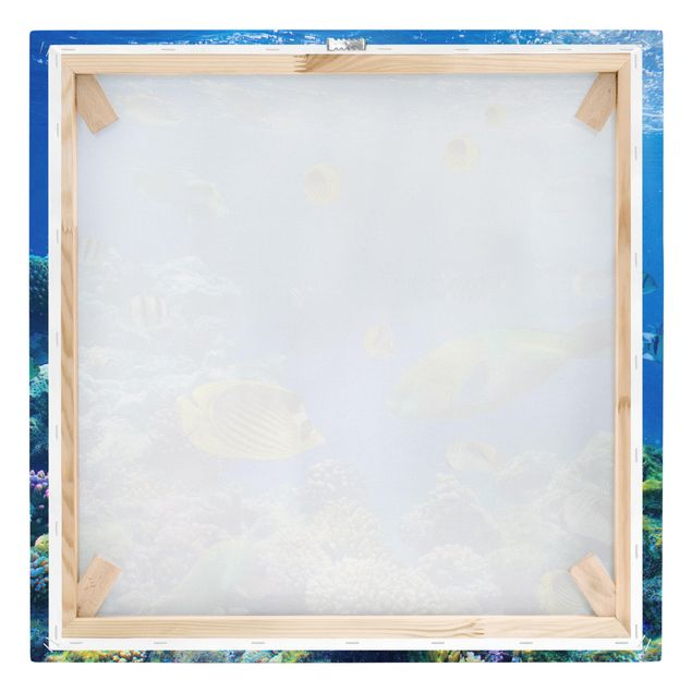 Produktfoto Leinwandbild - Underwater Lights - Quadrat 1:1, Keilrahmen Rückseite, Artikelnummer 206838-FB