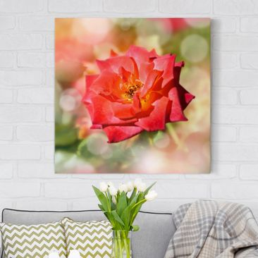 Produktfoto Leinwandbild - No.YK19 Shining Rose - Quadrat 1:1, vergrößerte Ansicht in Wohnambiente, Artikelnummer 207006-XWA