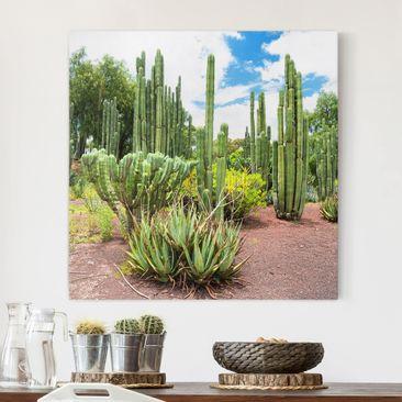 Immagine del prodotto Stampa su tela - Cactus Landscape - Quadrato 1:1