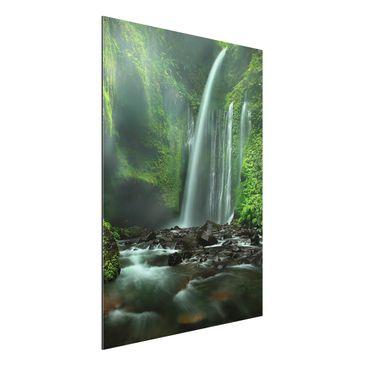 Produktfoto Alu Dibond Bild - Tropischer Wasserfall...