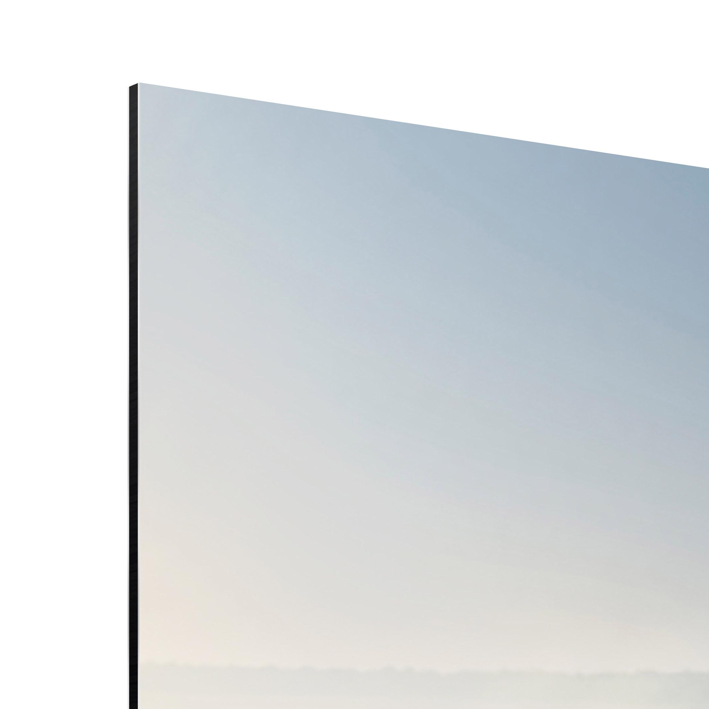 alu dibond bild zebra promenade panorama quer. Black Bedroom Furniture Sets. Home Design Ideas