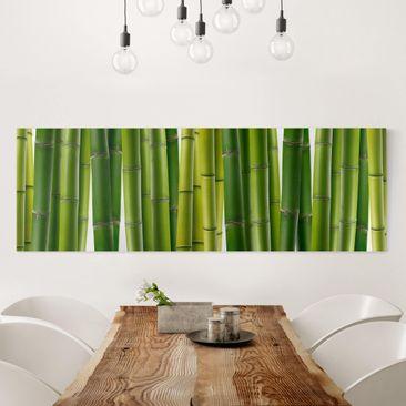 Produktfoto Leinwandbild - Bambuspflanzen - Panorama Quer, vergrößerte Ansicht in Wohnambiente, Artikelnummer 207755-XWA