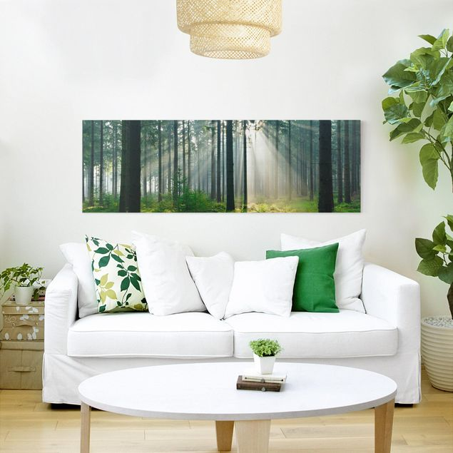 Produktfoto Leinwandbild - Enlightened Forest - Panorama Quer, in Wohnambiente, Artikelnummer 207836-WA