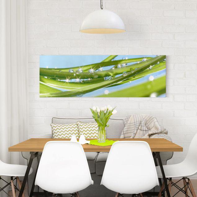 Produktfoto Leinwandbild - Fresh Green - Panorama Quer, in Wohnambiente, Artikelnummer 207866-WA