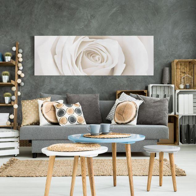 Produktfoto Leinwandbild - Pretty White Rose - Panorama Quer, in Wohnambiente, Artikelnummer 208030-WA