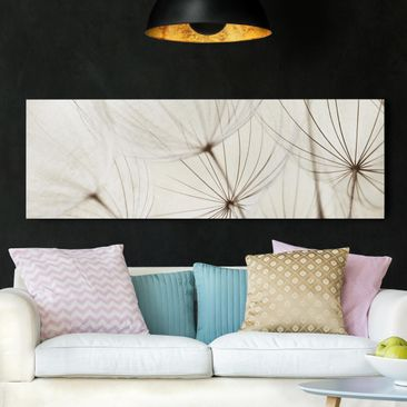 Product picture Canvas Art - Gentle Grasses - Panoramic