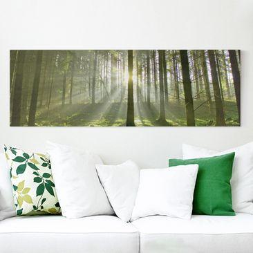 Produktfoto Leinwandbild - Spring Fairytale - Panorama Quer, vergrößerte Ansicht in Wohnambiente, Artikelnummer 208099-XWA