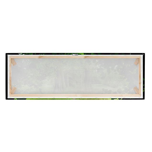 Produktfoto Leinwandbild - Verborgene Lichtung - Panorama Quer, Keilrahmen Rückseite, Artikelnummer 208149-FB