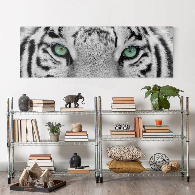 Produktfoto Leinwandbild Schwarz-Weiß - Weißer Tiger - Panoramabild Quer, in Wohnambiente, Artikelnummer 208166-WA