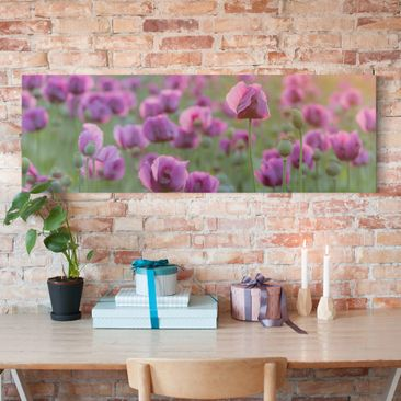 Immagine del prodotto Stampa su tela - Purple Poppy Flower Meadow In Spring - Panoramico
