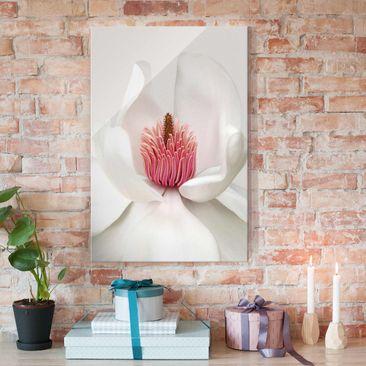 Produktfoto Glasbild - Magnolie in Pink - Hoch 3:2