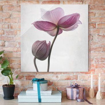 Immagine del prodotto Quadro in vetro - Anemoni in rosa - Quadrato 1:1