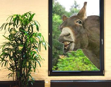Product picture Window Sticker no.249 Nosey Donkey