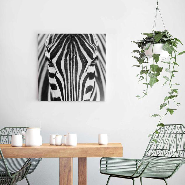 Produktfoto Glasbild - Zebra Look - Quadrat 1:1