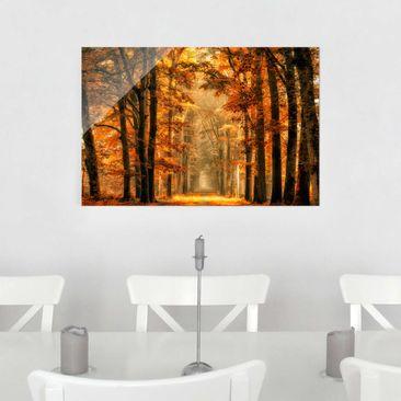 Produktfoto Glasbild - Märchenwald im Herbst - Quer 2:3