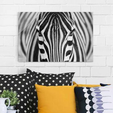 Produktfoto Glasbild - Zebra Look - Quer 2:3