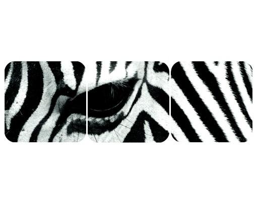 Produktfoto Selbstklebendes Wandbild Zebra Crossing No.4 Triptychon