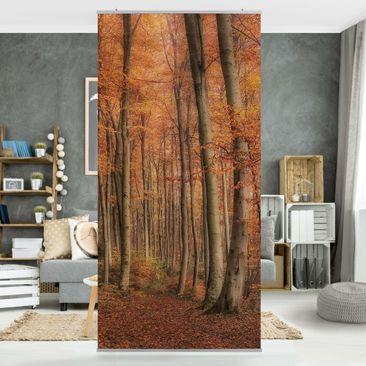 Produktfoto Raumteiler - Herbstspaziergang -...