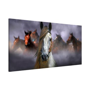 Produktfoto Magnettafel - Horses in the Dust - Memoboard Panorama Quer