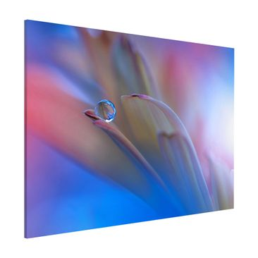 Produktfoto Magnettafel - Touch Me Softly - Memoboard Quer 3:4