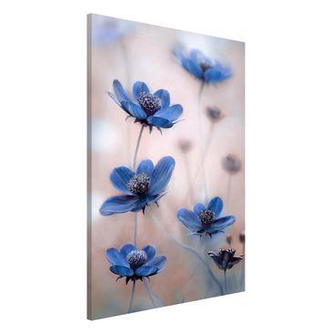 Produktfoto Magnettafel - Blaue Kosmeen - Memoboard Hoch 3:2