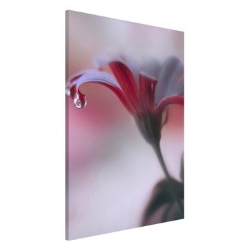 Produktfoto Magnettafel - Invisible Touch - Memoboard Hoch 3:2