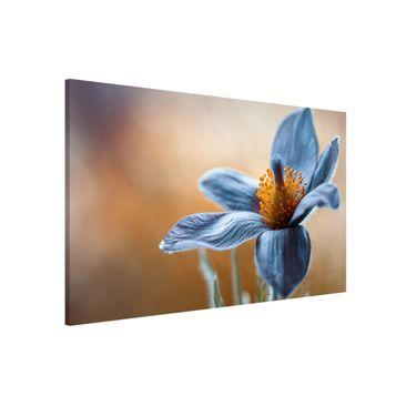 Produktfoto Magnettafel - Kuhschelle in Blau - Memoboard Quer 2:3
