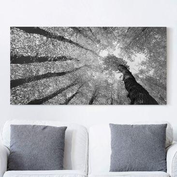 Produktfoto Leinwandbild Schwarz-Weiß - Bäume des Lebens II - Quer 1:2, vergrößerte Ansicht in Wohnambiente, Artikelnummer 211320-XWA