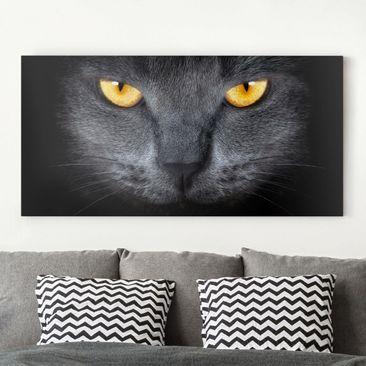 Produktfoto Leinwandbild - Cats Gaze - Quer 1:2, vergrößerte Ansicht in Wohnambiente, Artikelnummer 211324-XWA
