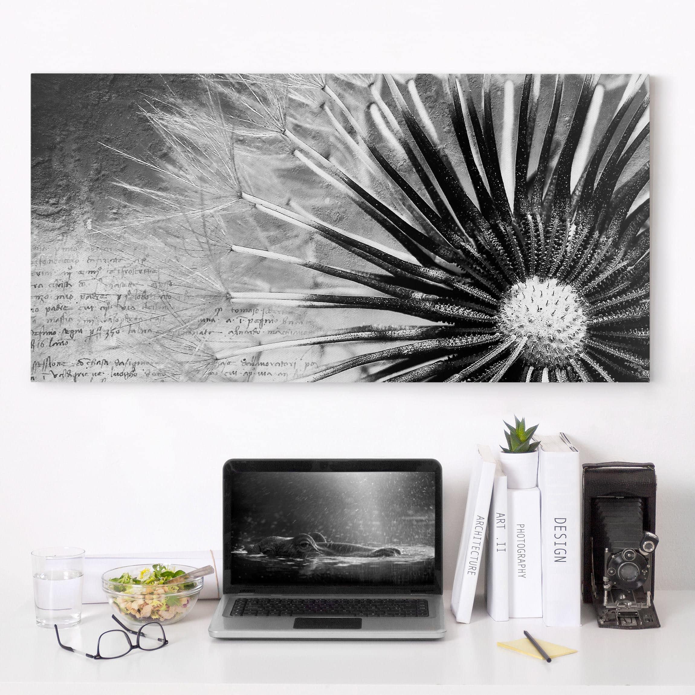Leinwandbild Schwarz-Weiß - Pusteblume Schwarz & Weiß - Quer 1:2