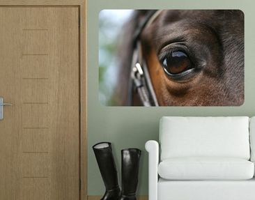 Product picture Wall Mural Horse Eye
