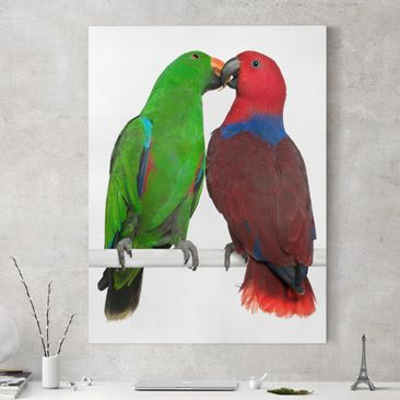 Produktfoto Leinwandbild - Verliebte Papageien - Hoch 4:3, vergrößerte Ansicht in Wohnambiente, Artikelnummer 211562-XWA