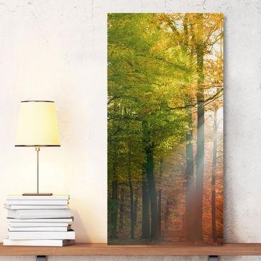 Produktfoto Leinwandbild - Morning Light - Hoch 2:1, vergrößerte Ansicht in Wohnambiente, Artikelnummer 211801-XWA