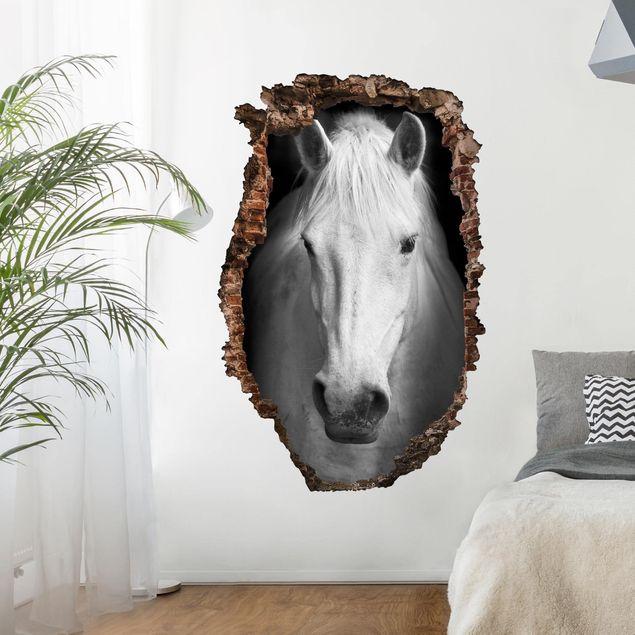 Produktfoto 3D Wandtattoo - Dream of a Horse - Hoch 3:2